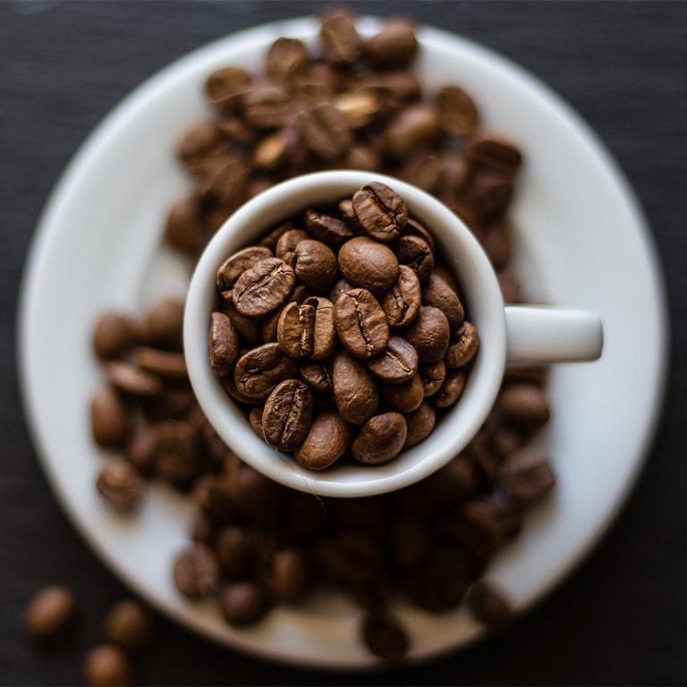 Coffee Beans Seeds